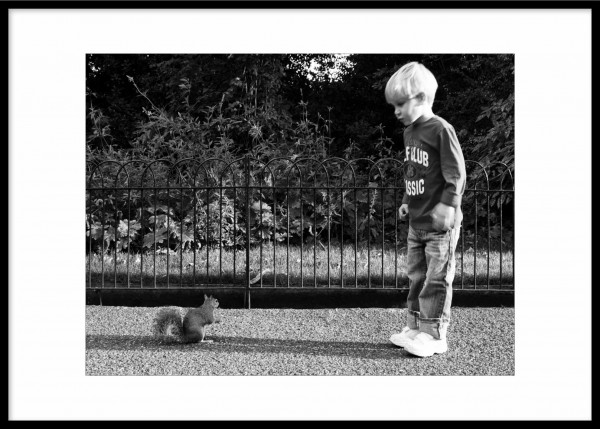 Squirrel and the Boy